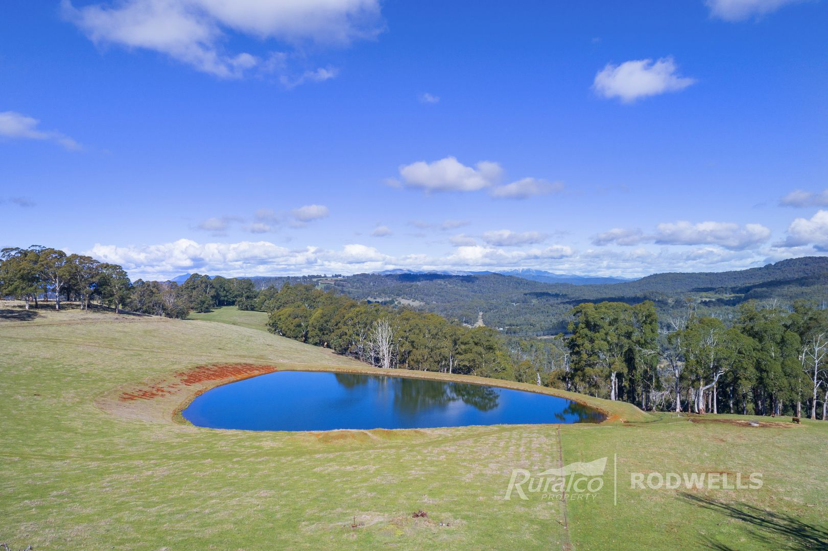 60 Marchese Road, Tolmie VIC 3723, Image 1