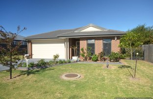 Picture of 16 MCKIMMIE COURT, Bairnsdale VIC 3875