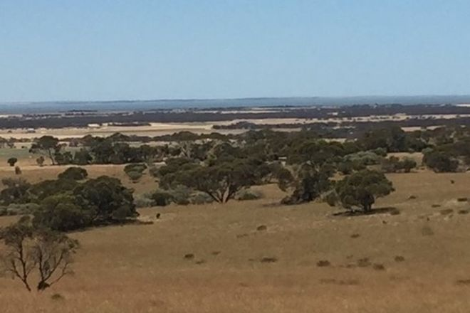 Picture of 1-7/1609 Chaunceys Line road, BRINKLEY SA 5253