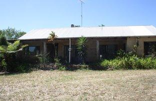 Picture of 100 cash road, Eumundi QLD 4562