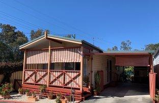 Picture of 164/64 Newman Street, Woolgoolga NSW 2456