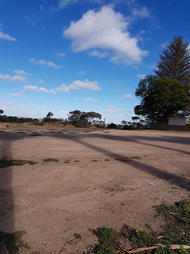 Section 1419, Old Sturt Highway, Berri SA 5343, Image 0