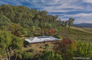 Picture of 6017-6019 Mansfield-Whitfield Rd, Whitfield VIC 3733