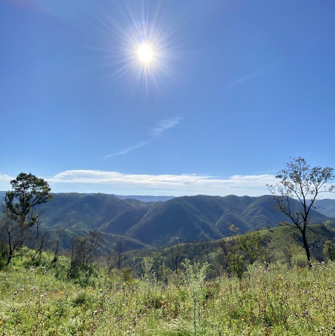 Rocklilly Road, Taralga NSW 2580, Image 2