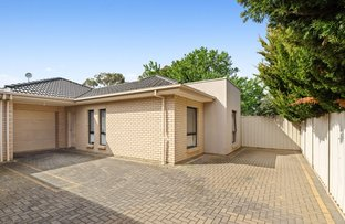 Picture of 7B Byron Avenue, Clovelly Park SA 5042