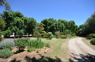 Picture of 878 Wharparilla Road, Echuca VIC 3564