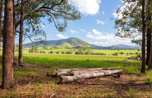Picture of 423 Comboyne Road, Wingham NSW 2429