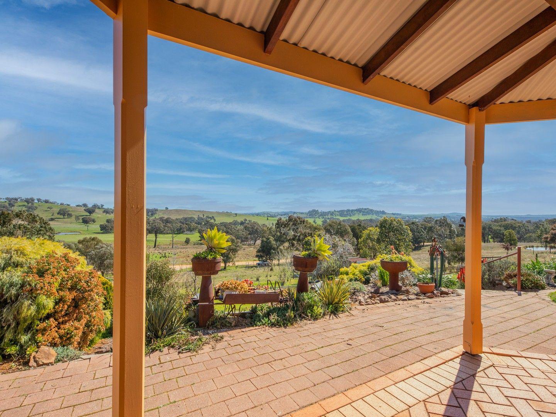81 Bonnie Springs Road, Jindera NSW 2642, Image 0