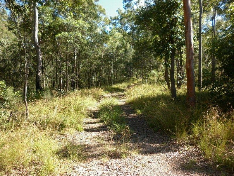 972 Noosa Road, Mothar Mountain QLD 4570, Image 0