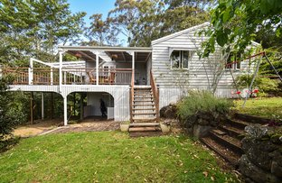 Picture of 7 Salvia Drive, Tamborine Mountain QLD 4272