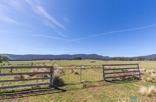 884 Charleys Forest  Road, Charleys Forest NSW 2622