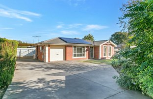 Picture of 137 Collins Street, Broadview SA 5083