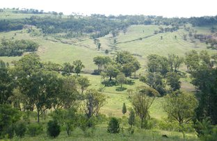 Picture of 2529 Mt Nombi Road, Mullaley NSW 2379
