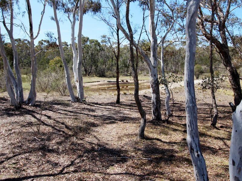 417 Duckfield Road, Boro NSW 2622, Image 0