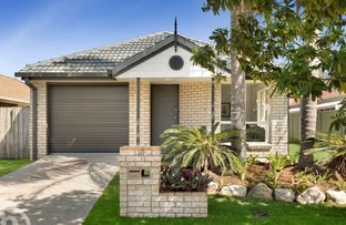 Picture of 10 Violet Place, Wavell Heights QLD 4012