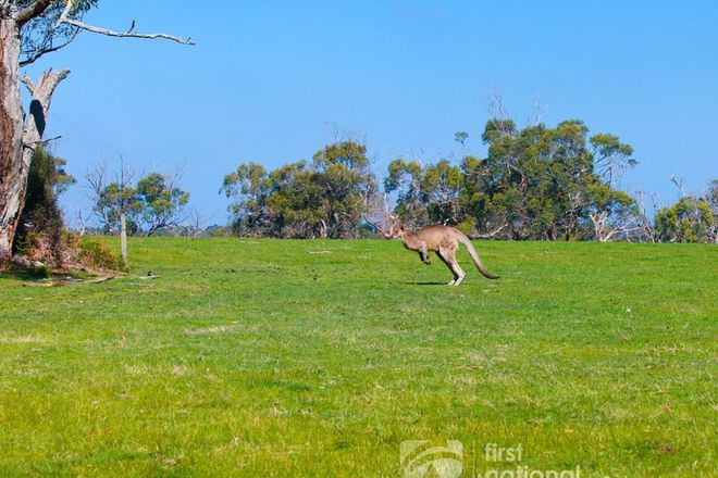 Picture of LOT 47 660 LYNNES ROAD, WATTLE BANK VIC 3995