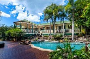 Picture of 17 Xanadu Court, Tallai QLD 4213