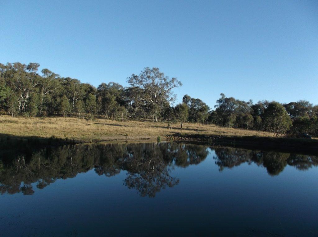 Lot 37 Mount Lindesay Road, Liston NSW 2372, Image 2