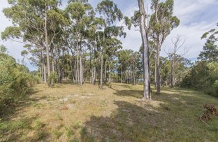 Picture of LOT 262 Sapphire Coast Drive, Tura Beach NSW 2548