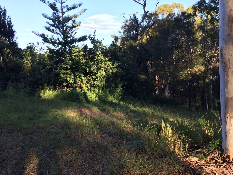 51 Jasper St, Russell Island QLD 4184, Image 2