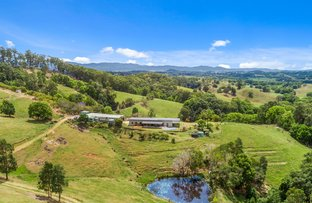 Picture of 22 KINGS GULLY ROAD, Dunbible NSW 2484