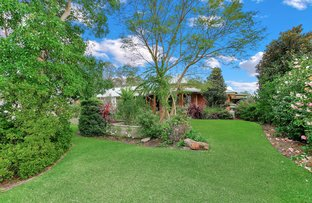 Picture of 18 Leschenaultia Circle, Donnybrook WA 6239