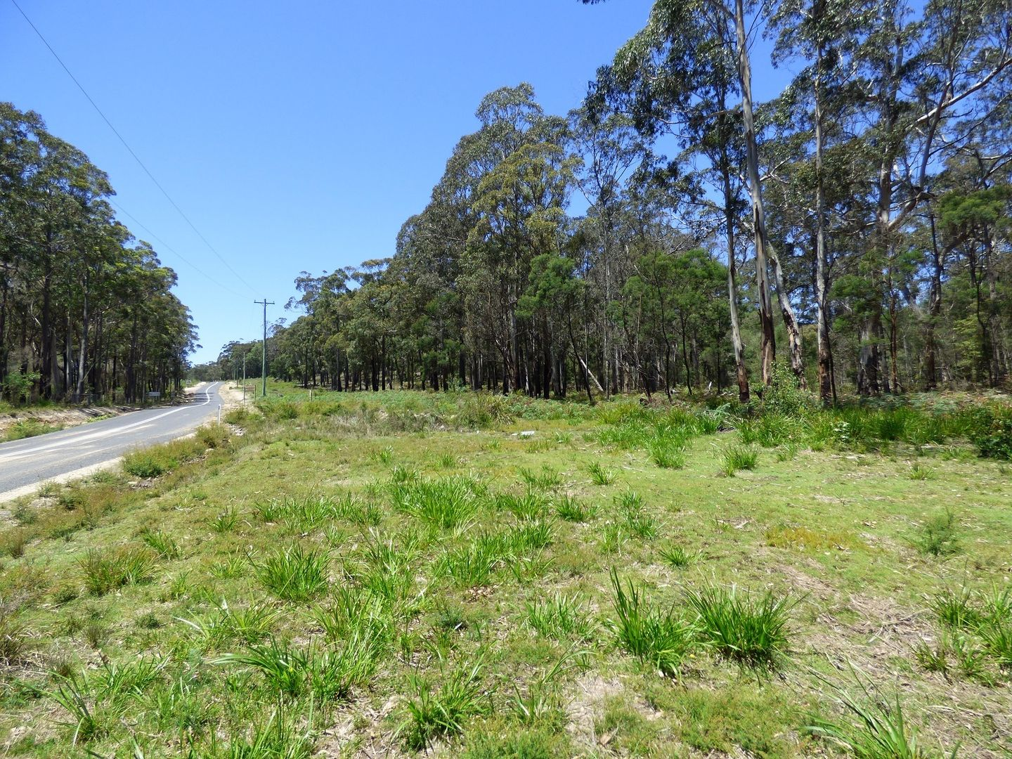 LOT A Gleeson Road Wonboyn Via, Eden NSW 2551, Image 2