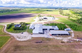 Picture of Bruce H'way & East Euri Creek, Bowen QLD 4805
