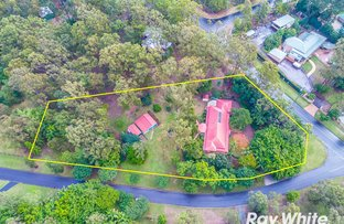 Picture of 2 Frigo Court, Bunya QLD 4055