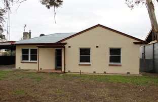 Picture of 10 Poplar Avenue, Keith SA 5267