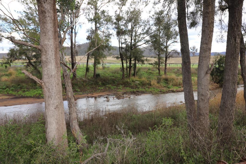 1471 Martindale Road, Denman NSW 2328, Image 2