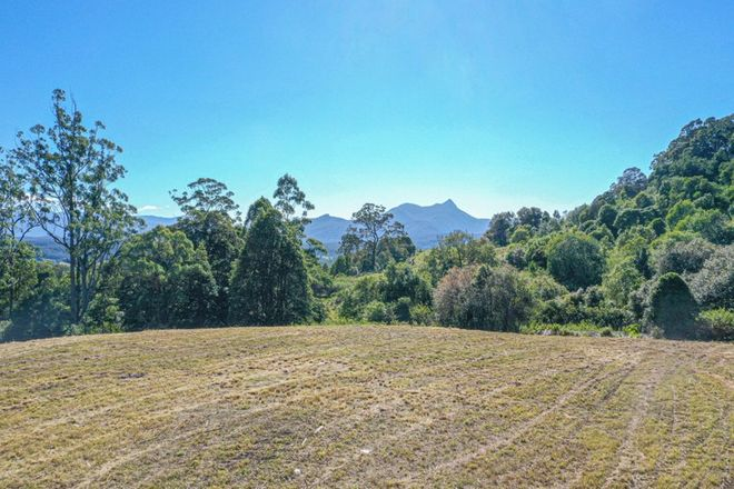 Picture of 437 Mount Burrell Road, MOUNT BURRELL NSW 2484