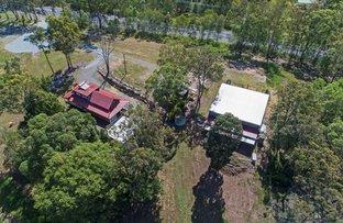 Picture of 1369 Beaudesert-Beenleigh Rd, Cedar Creek QLD 4207