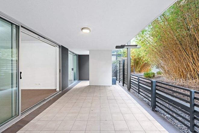 Picture of Courtyard, 141 Campbell Street, BOWEN HILLS QLD 4006