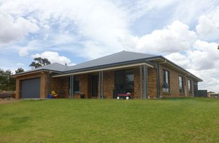 Picture of 177 Cons Lane, Parkes NSW 2870