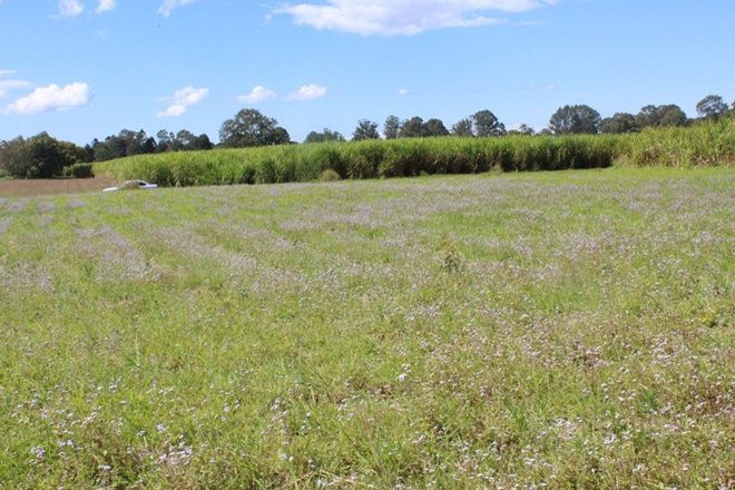 Picture of Lot 5 Dundas Street, GRANVILLE QLD 4650