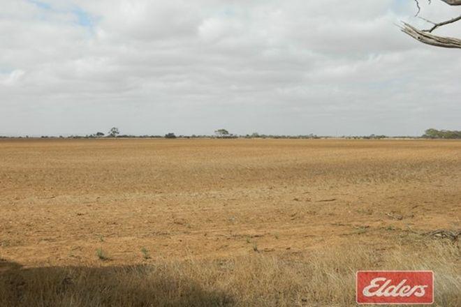 Picture of Lot 787 Calomba Road, MALLALA SA 5502