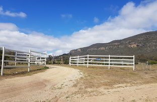 """Picture of 1060 Sandy Creek Rd """"Misty Views"""", Mc Cullys Gap NSW 2333"""