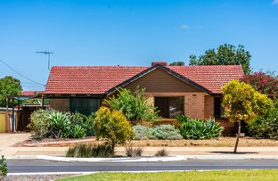 Picture of 145 Peachey Rd, Davoren Park SA 5113