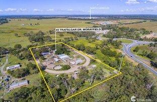 Picture of 45 Trafalgar Drive, Morayfield QLD 4506