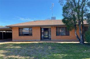 Picture of 45 Garden Avenue, Warren NSW 2824