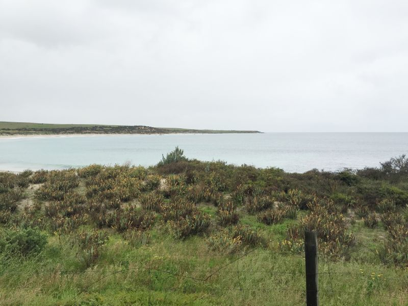 Lot 5 Coast Road, Port Neill SA 5604, Image 1