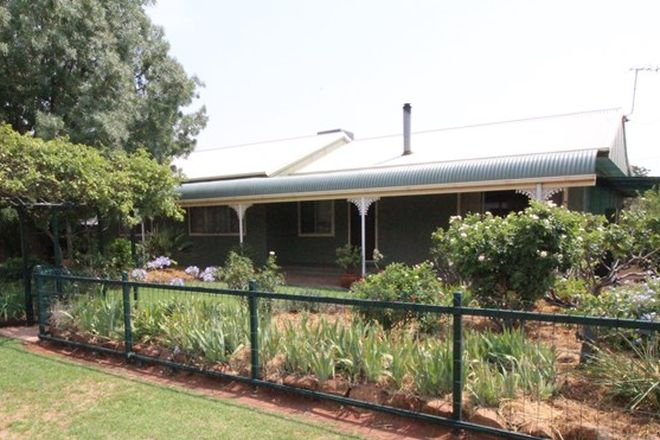 Picture of 19 Cobram Street, GOOLGOWI NSW 2652