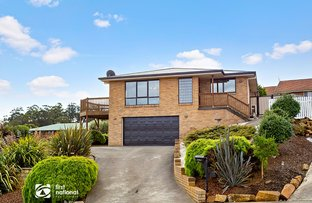 Picture of 32 Mills Road, Park Grove TAS 7320