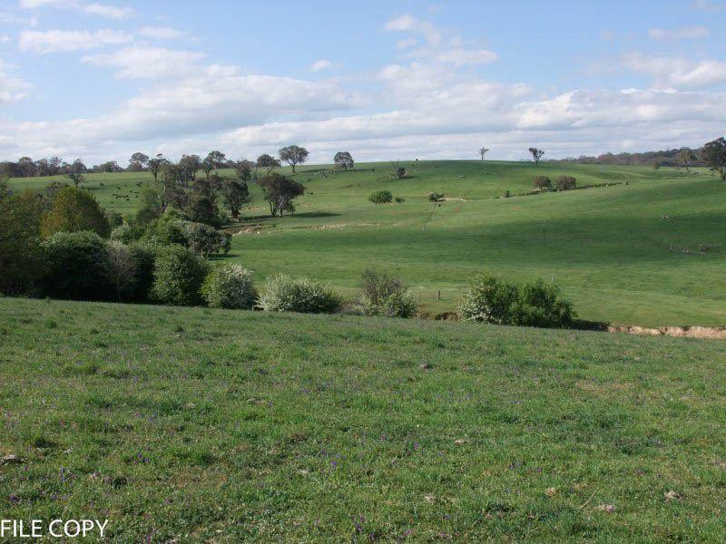 4828 Mid Western Highway, Blayney NSW 2799, Image 1