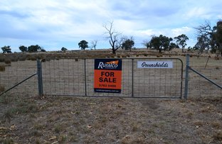 Picture of CA 48HB 250 Daisyburn Road, Glenaroua VIC 3764