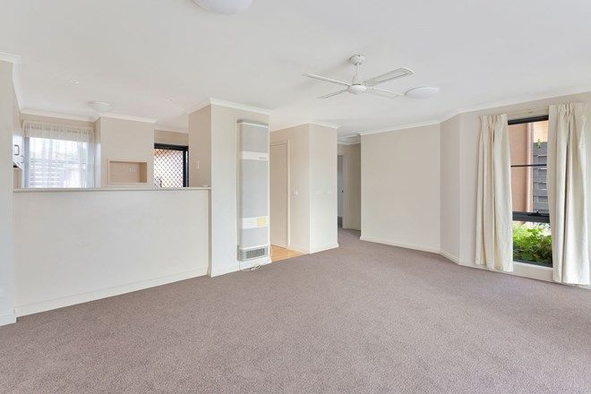 Picture of 8/10 Marfell Road, WARRNAMBOOL VIC 3280