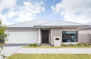 Picture of 29 Brewerton Close, Gledswood Hills NSW 2557