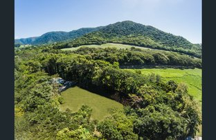 Picture of Lot 11, 235 Mowbray River Road, Mowbray QLD 4877