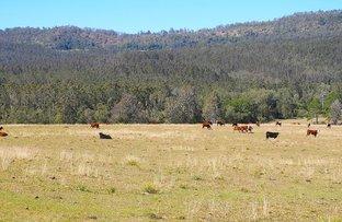 Picture of 408 Farm Road, Bonalbo NSW 2469